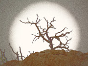 Back Lighting Digital Art Prints - Grainy Pinhole of a Tree Print by Carolina Liechtenstein