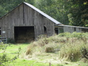 Gramma's Barn Print by Laurie Kidd