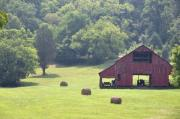 Red Tractors Prints - Grampas Summer Barn Print by Jan Amiss Photography