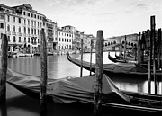 Kim Baker Art - Grand Canal by Kim Baker