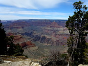 Natural Forces Originals - Grand Canyon 1 by Tanya  Searcy