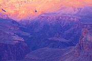 Grand Canyon Photos - Grand Canyon. Arizona by Viktor Savchenko