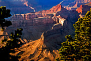 Desert View Paintings - Grand Canyon at Hermit Rest by Nadine and Bob Johnston