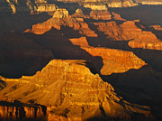 Grand Canyon National Park Photos - Grand Canyon Glow by Alex Cassels