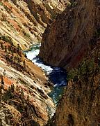 Grand Canyon Of The Yellowstone 1 Print by Marty Koch