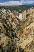The Grand Canyon Of The Yellowstone Prints - Grand Canyon of the Yellowstone and Yellowstone Falls Print by Greg Nyquist