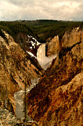 Yellowstone Digital Art Prints - Grand Canyon of the Yellowstone Print by Ellen Lacey