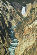Grand Canyon Of The Yellowstone Prints - Grand Canyon of the Yellowstone I Print by Clarence Holmes