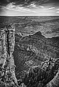 Scenic - Landscape - Grand Canyon Ridgeline by Darcy Michaelchuk