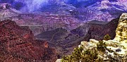 Shannon Story Framed Prints - Grand Canyon Framed Print by Shannon Story