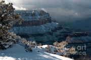 Winterscape Posters - Grand Canyon Storm Poster by Sandra Bronstein