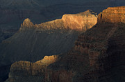 Grand Canyon Photos - Grand Canyon Vignette 1 by Bob Christopher