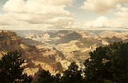 Marilyn Wilson - Grand Canyon Vista