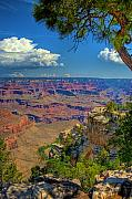 South Rim Framed Prints - Grand Canyon Vista Framed Print by William Wetmore