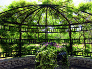 Creepers Prints - Grand Gazebo Print by Douglas Barnard