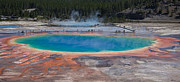 Ralf Kaiser Framed Prints - Grand Prismatic Spring Framed Print by Ralf Kaiser