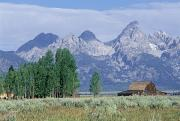 Farm Structure Framed Prints - Grand Teton National Park, Wyoming, Usa Framed Print by Dan Sherwood