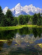 Marty Koch Framed Prints - Grand Tetons 2 Framed Print by Marty Koch