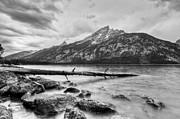 Mountains And Lake Prints - Grand Tetons above Jenny Lake Jackson Hole Print by Dustin K Ryan