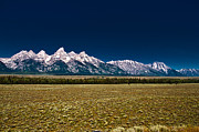 Hall Originals - Grand Tetons  by Sabrina  Hall