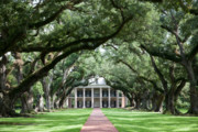 Oak Alley Plantation Photo Prints - Grande Dame of the Great River Road II Print by Irene Abdou