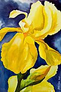 Yellow Green Blue Prints - Grandmas Yellow Iris Print by Janis Grau