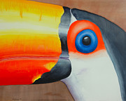 Toucan Originals - GrandPa Toucan by John  Sweeney