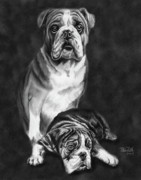 Pet Drawing Drawings Posters - Grandson of Sampson Poster by Peter Piatt