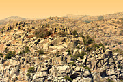 Wichita Prints - Granite Cliff  Print by Douglas Barnard