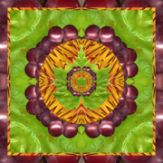Sacred Geometry Posters - Grape Domain Poster by Bell And Todd