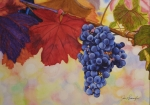 Vine Paintings - Grape Harvest by Jan  Spangler