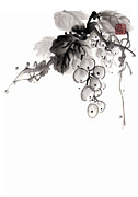 Grape Drawings Metal Prints - Grape Metal Print by Japan collection