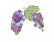 Blue Grapes Drawings - Grapes by DebiJeen Pencils