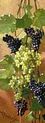 Oil Wine Framed Prints - Grapes Framed Print by Edward Chalmers Leavitt