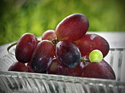 Purple Grapes Photos - Grapes by Gwyn Newcombe