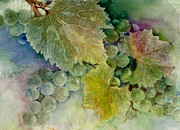 Grape Leaves Framed Prints - Grapes II Framed Print by Judy Dodds