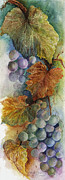 Vine Leaves Prints - Grapes IV Print by Judy Dodds