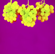 Bunch Of Grapes Art - Grapes by Johnny Greig