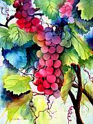 Vine Paintings - Grapes by Karen Stark