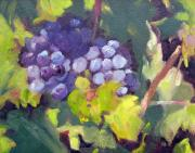 Napa Valley Vineyard Paintings - Grapes On Vines by Deborah Cushman