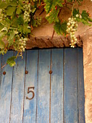 France Doors Prints - Grapes Over Blue Door Print by Lainie Wrightson