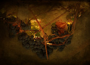 Concord Grapes Metal Prints - Grapes Metal Print by Peter Labrosse