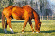 Grazing Horse Digital Art Posters - Grass Cafe Poster by Anthony Caruso