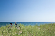 York Beach Posters - Grass Covering Bicycle Parked On Beach Dune. Poster by Alberto Coto
