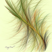 Gossamer Framed Prints - Grasses Framed Print by Corey Ford