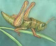 Grasshopper Print by Anne Havard