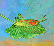 Creepy Digital Art Prints - Grasshopper Print by Mary Ogle