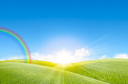 Summer Season Landscapes Prints - Grassland In The Sunny Day With Rainbow Print by Setsiri Silapasuwanchai