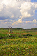 Saskatchewan Photos - Grasslands National Park by Charline Xia