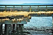 Wooden Dock Prints - Grassy Dock Print by Calvin Wray